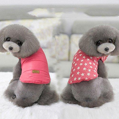 Fit Into Everyway doppelten Seiten tragen Pet Hunde Vier Beine Coat Hunde-Kleidung-Haustier Winterkleidung (Rosa, S)