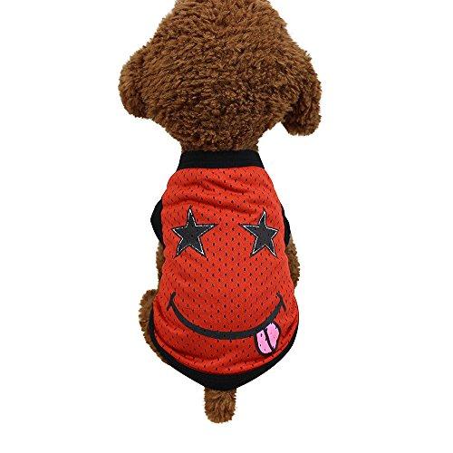 rkleidung Haustier Kleidung Warm Sweater Hund Kleider Cute Haustierpullover Hundepullover Hündchen Katze Hund Mesh Pullover Sweatshirt ()