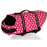 Dog Life Jackets Review and Comparison