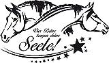 GRAZDesign 640078_40_070 Wandtattoo Spruch vier Beine tragen deine Seele | Aufkleber als Dekorationsartikel | Pferde Sprüche für Mädchen-Zimmer (70x40cm//070 schwarz)