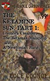 The Ketamine Sun, Part 1: Cremora Creamer, The Betamax Malaprop and A Newtonian Bang (English Edition)