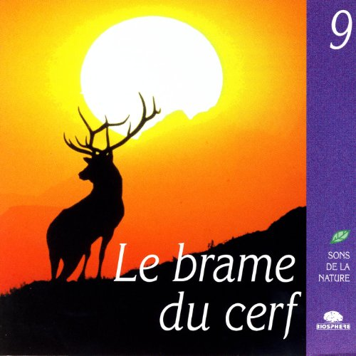 The Belling Of The Stag (Le Brame Du Cerf)