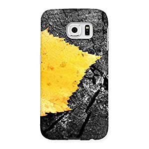 Lonely Leaf Multicolor Back Case Cover for Samsung Galaxy S6