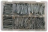 Connect 31875 - Kit composto da circa 1.000 copiglie zincate, misure piccole assortite