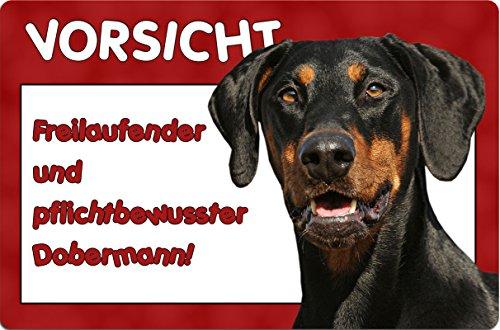 +++ DOBERMANN - Metall WARNSCHILD Schild Hundeschild Sign - DBM 17 T6