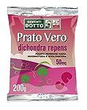 Sdd 40030050 Prato Dichondra Repens, Verde, 12x20x2 cm