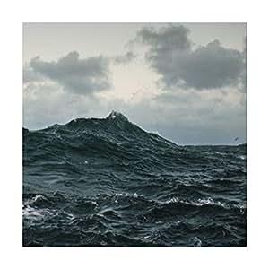 Repave [Ltd.Edition] [Vinyl LP]