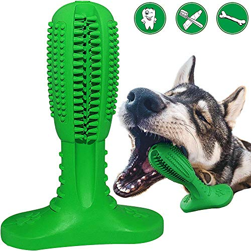 RUCACIO Hunde zahnbürste Hundespielzeug Dog Toothbrush Hunde Zahnpflege Naturkautschuk Hund Kauen Zahnreiniger Zahnbürste Zahnreinigung Geschenk für Haustiere (Passt 20-40 Pfund Hund)