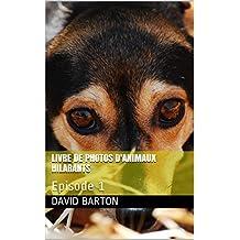 Livre de photos d'animaux hilarants: Episode 1 (French Edition)