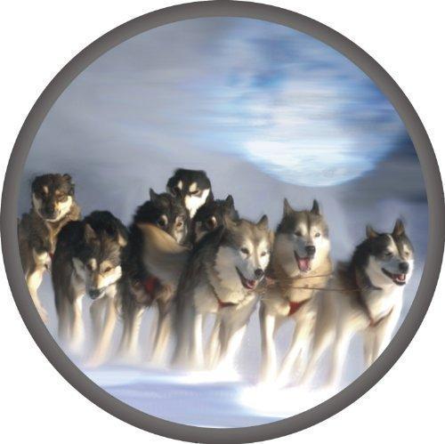 Preisvergleich Produktbild Aufkleber 10 cm Husky - Schlitten auf Frostfolie mit Perlmutt-Effekt