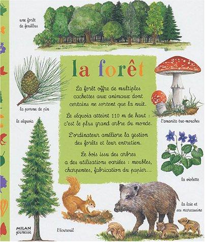 La forêt par Emilie Bonatre
