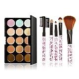 Reixus(TM) 15 colori trucco Crema Viso di profilo di Concealer Palette Blemish copertura + 5pcs Spazzole di sagoma del camuffamento Base Cosmetics Kit