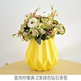 WANG-shunlida Künstliche Blumen, Wohnzimmer, Esszimmer, Esszimmer Dekorationen, Kaffee Tabellen, Topfpflanzen Eier, Diamanten, kleine Kaffee direkt Online, Das