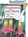 Brugmansia and Datura: Angel's Trumpe...