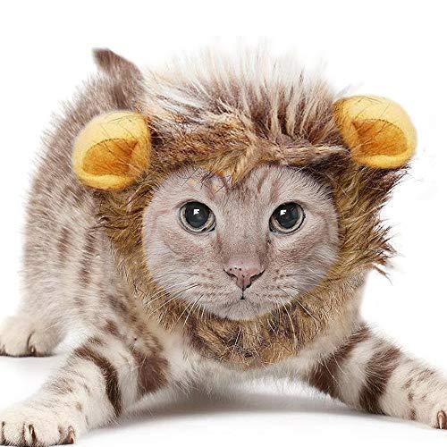 Característica:ES HORA DE ENROJECERSE - Perro melena de león es el más realista que mejor se ajusta melena de león para perros - Convierte tu precioso perro en un rey curiosamente feroz de la selva en un instanteFÁCIL limpiar Artículo - Nos aseguramo...