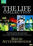 Attenborough The Life Collection kostenlos online stream