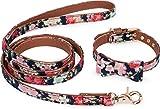 Puccybell Blumen Hundehalsband mit Schleife und Hundeleine (1,2m) im Set, Halsband mit Fliege und Leine für kleine und mittelgroße Hunde HLS005 (L, Blau)