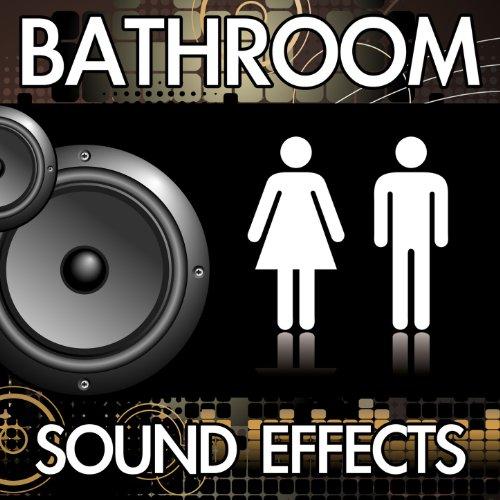 Toilet Flush (Version 9) [Restroom Bathroom Washroom Flushing Noise Clip] [Sound Effect] -