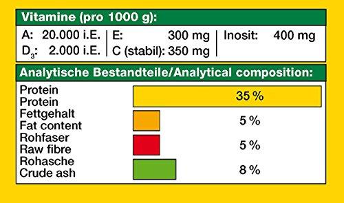 JBL NovoFect 30247 Alleinfutter für pflanzenfressende Aquarienfische, Tabletten 100 ml