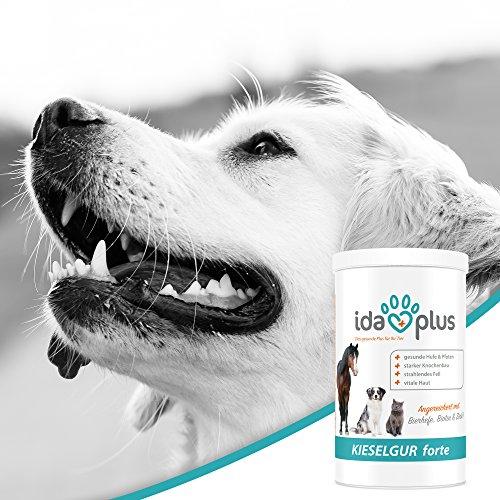 AniPlus – Kieselgur forte 400 g für Hunde unterstützt die Fell- und Hautbeschaffenheit mit wertvollem Silizium (100% biologisch) - 5
