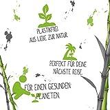 Snoww White Bambus Zahnbürste - Umweltfreundlich mit extra Weiche Borsten