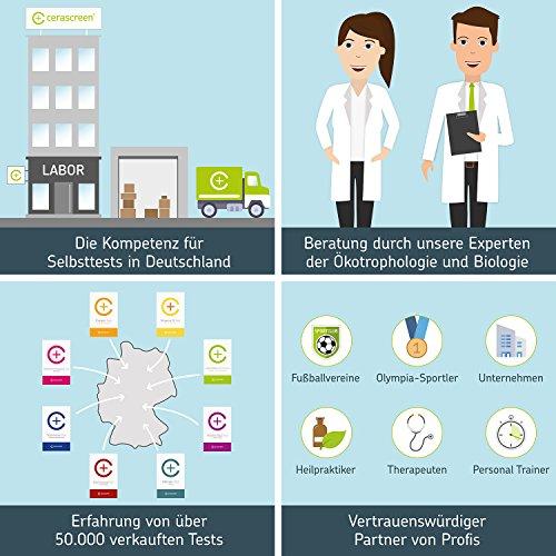 cerascreen® Langzeit-Blutzucker Test Kit – Langzeit-Blutzucker-Wert (HbA1C-Wert) schnell & einfach per Selbsttest von Zuhause bestimmen | Langzeit Blutzucker & Diabetes Online Test | Jetzt HbA1C Wert messen & präventiv auf Diabetes testen