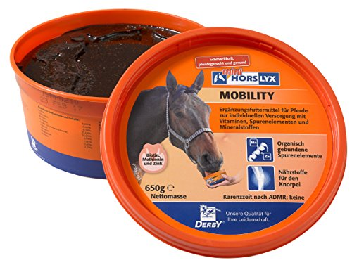 Derby Horslyx Mobility 650 g