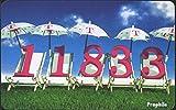 RFA (FR.Allemagne) pd60 pd 07/99 1999 11833 renseignements (téléphoniques pour les collectionneurs)...