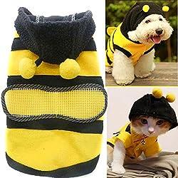 Disfraz de abeja lindo perro Polar