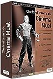 Chefs-d'oeuvre du Cinéma Muet - Douglas Fairbanks - Coffret 5 DVD [Francia]