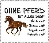 AdriLeo Brillenputztuch Displaytuch - Ohne Pferd ist Alles doof! - 15x17cm