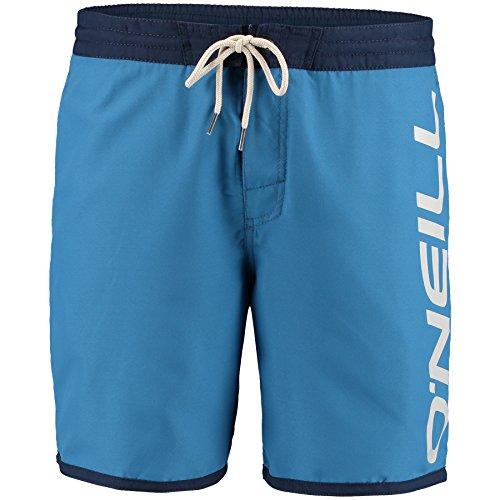 O'Neill Herren Naval Shorts Boardshorts dusty blue
