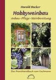 Hobbyweinbau - Anbau, Pflege, Weinbereitung