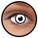 Farbige Kontaktlinsen weiß Vampir - Ideal für Halloween, Karneval, Fasching oder Fastnacht - Inklusive Behälter von FXEYEZ - In verschiedenen Stärken als 2er Pack
