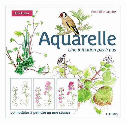 L'Aquarelle par Amandine Labarre