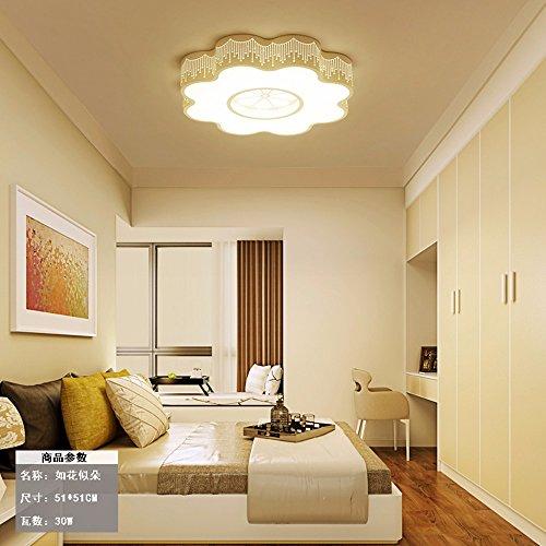 Deckenleuchte Wohnzimmer Schlafzimmer Home Lighting Modern Einfach Restaurant kreativ Lampen LED Acryl Bügeleisen Blumen drei Farben machen Licht 51 Cm +30 W MeloveCc -