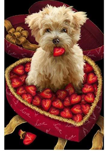 CNLSZM 5d DIY volle runde Bohrer Diamant malerei kreuzstich Hund Essen erdbeeren Stickerei mosaik dekor Geschenk 50x70 cm (Hund Diamant Essen)
