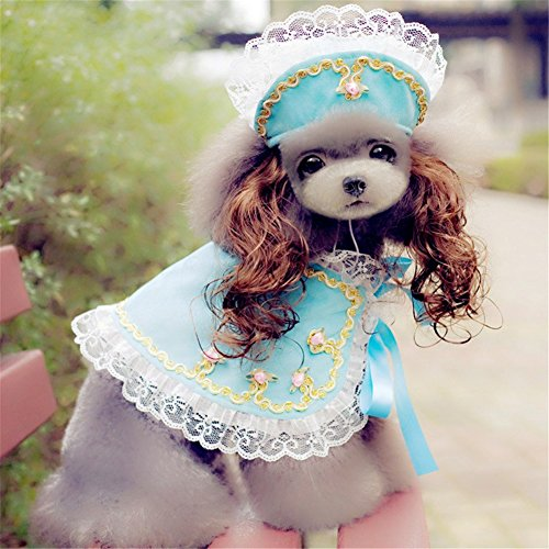 Pet Online Hund Kleidung Halloween Dress Up Princess Style Haustier Mantel Hut Perücke Set Fancy Festival Kostüm, blau, L