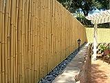 DE-COmmerce haute qualité Clôture de jardin Brise-Vue Bambou Nature I jardin, terrasse, Brise vue pour balcon bambou avec fermé tubes I coupe-vent bambou - 150 cm x 500 cm