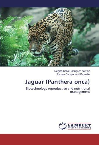 Jaguar (Panthera onca): Biotechnology reproductive and nutritional management