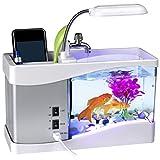 Mini USB Aquarium Multifunktions LCD Desktop Lampe Licht Aquarium mit LED Uhr, Dual Fach Schreibtisch Organizer 24 * 20 * 9.7cm (White)