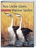 Aus Liebe übers Wasser laufen - Vitus B. Dröscher