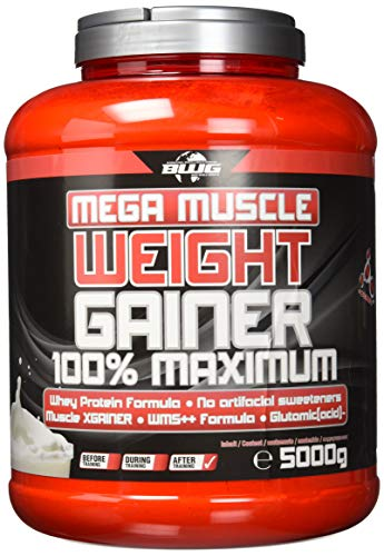 BWG Mega Muscle Weight Gainer 100{0f4a362aa2f20bec10de1887c8f4a5cc55d0eb1d9406d57484e519c05676046c} Maximum, Joghurt-Cherry, Dose mit Dosierlöffel, 5000 g