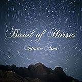Infinite Arms [Vinilo]