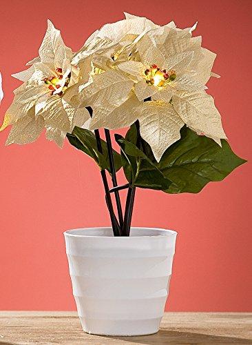 dekojohnson Wunderschöner Weihnachtsstern Dekoblume Kunstblume Plastikblume im Topf mit 5 LED Blüten, Gold, 23x23x36 cm