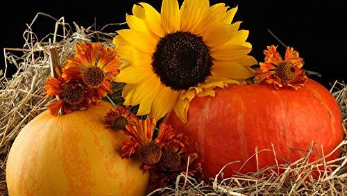 Carving Pumpkins Muster - KJWJD 500/520/1000 Pcs Wooden Puzzle -