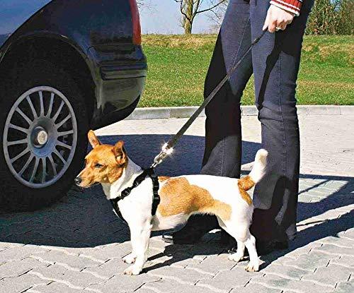Pettorina per cani S 30-60cm, Trixie, Apparecchiature Auto, Auto, Cablaggio, Cani