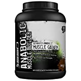 Muscle Builder Supplements Review and Comparison