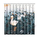 WOCNEMP Home Decor Bad Vorhang Wasser Ente Schwan Vögel Tier Natur Outdoor Polyester Stoff Wasserdicht Duschvorhang Für Badezimmer, 72 X 72 Zoll Duschvorhänge Haken Enthalten