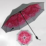 Unbekannt &Taschenschirm Sonnenschirme UV-Regenschirme Damen Doppel-Sonnenschirme (Farbe : H)